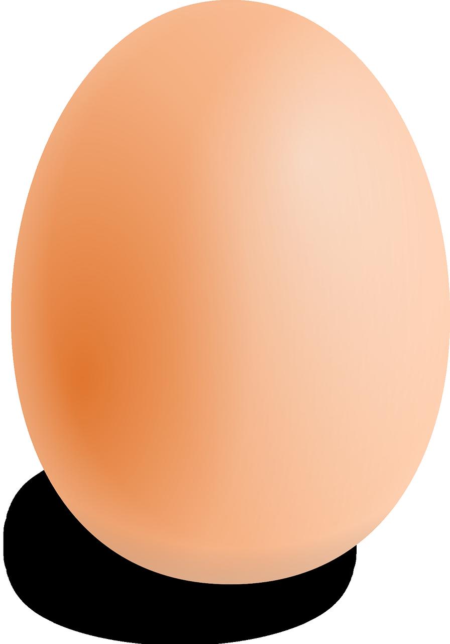 the egg diet